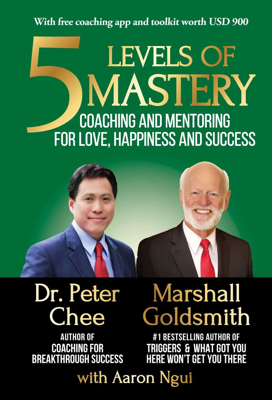 5 Levels of Mastery